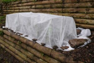 Cheesecloth covering garden greens