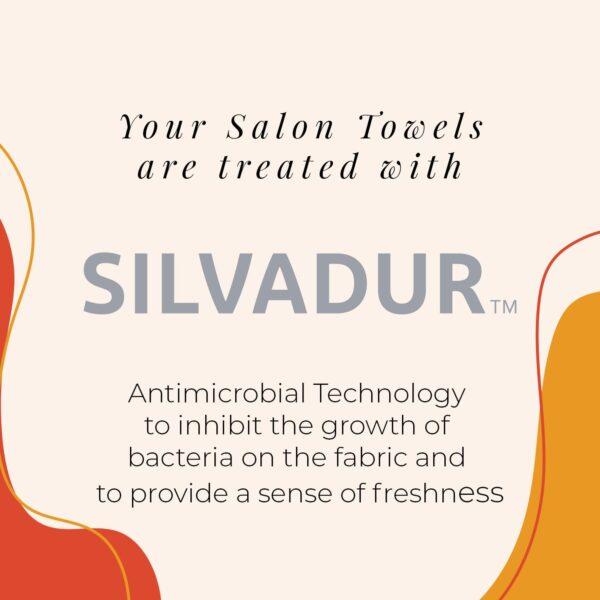 Silvadur infographic